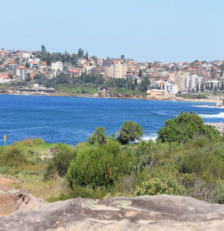 Bondi to Coogee walk view of the Clovelly to Coogee walk